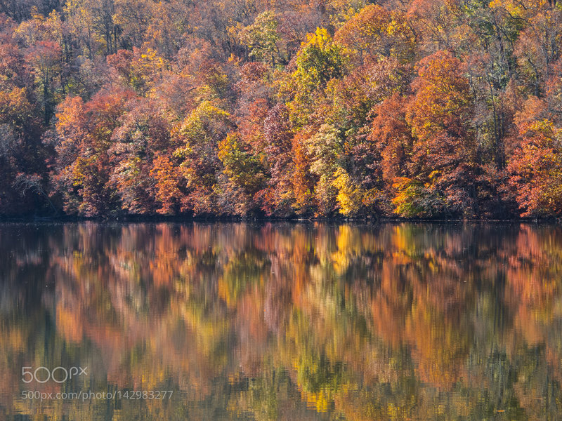 Awesome Fall colors at Loch Raven.