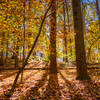 Sunlight and color; this is area is great in Fall.