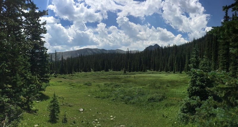 Meadow on the way to Missouri Lakes