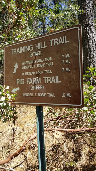 The sign at the top of Pig Farm Trail.