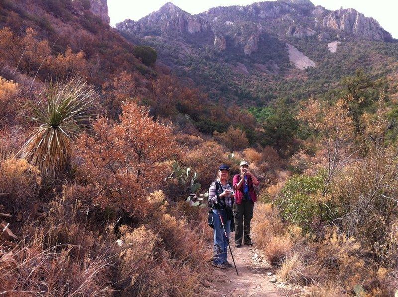 Heading along the Laguna Meadow Trail.