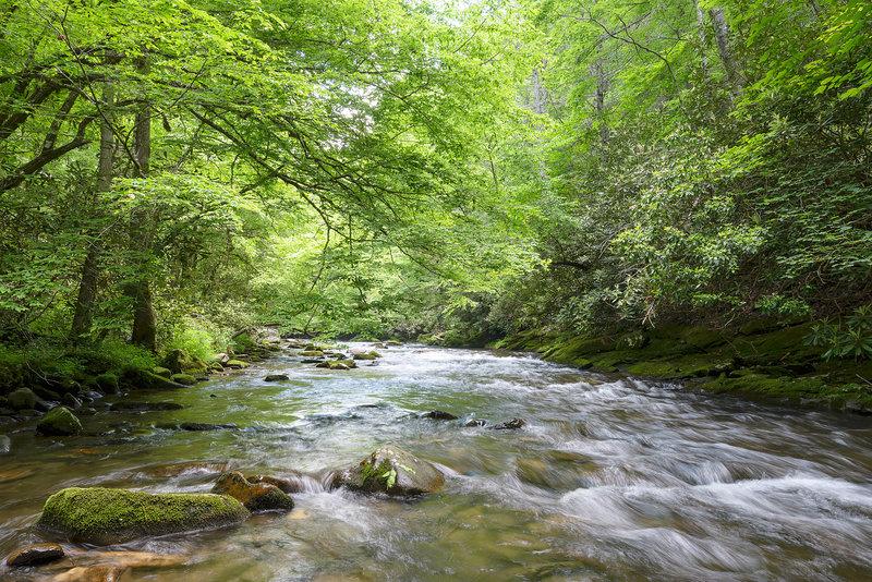 Deep Creek, Great Smoky Mountains NP.