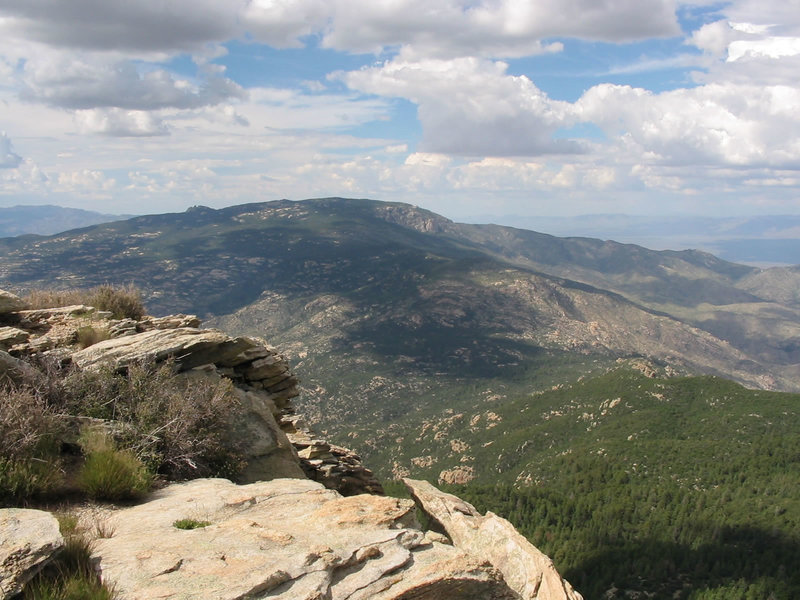 The rocky summit of Rincon Peak rises out of ponderosa pine forests.