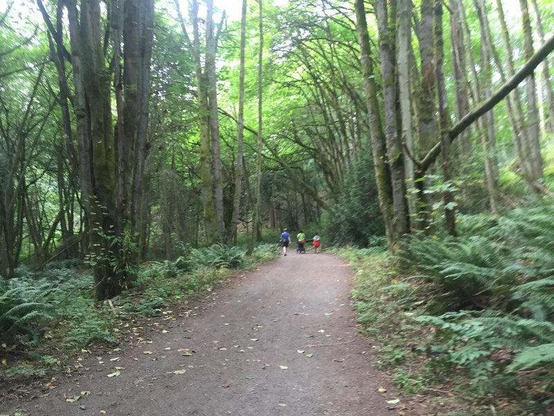 The path is generally wide and big jogging strollers are fine to use.