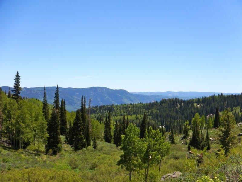 Logan Canyon.