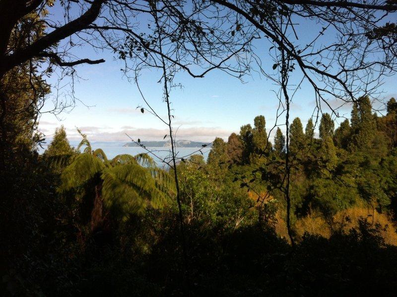 Lake views on the descent to Kawakawa Bay.