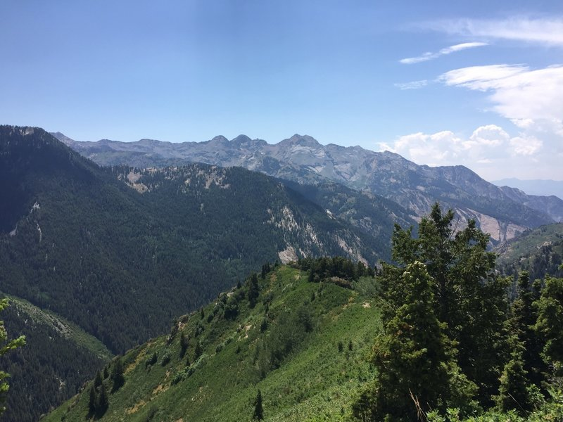 View from the Top of Butler Fork Trail.  Photo on Aug 2, 2016