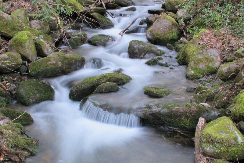 Stream feeding Big Creek.