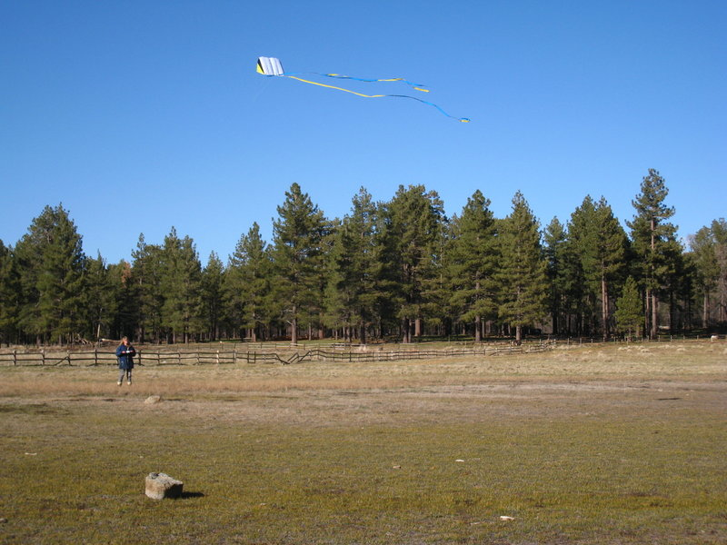 Nice meadow to fly a kite.