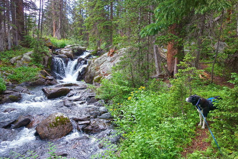 A beautiful section of Boulder Creek that is passed on the way to Upper Boulder Lake.