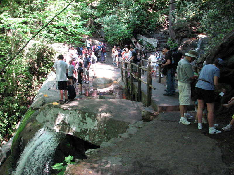 A busy day at Laurel Falls.