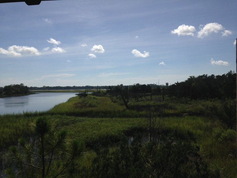 View of the marsh and St. John's River from the pavilion.