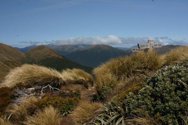 Mt. Jumbo on a good day. Hard to beat.