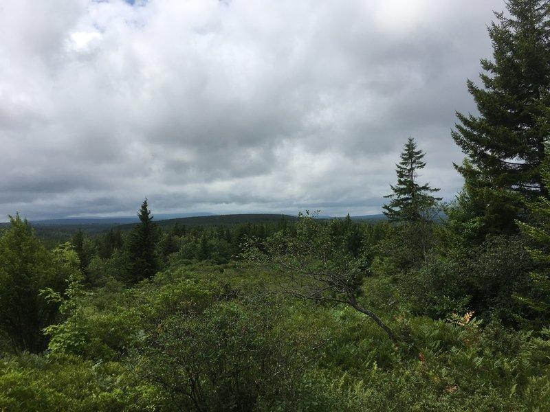 Great view near the trailhead at SR 75.