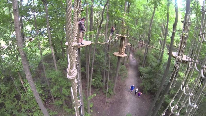GoApe section of the park. Great family fun and one of the park's main attractions.