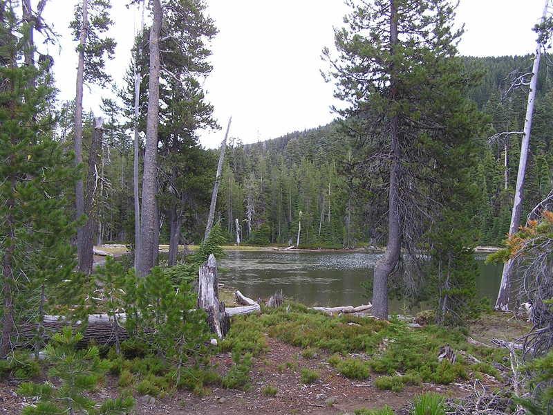 Frog Lake.