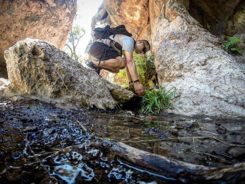 Pinnacles natural waters