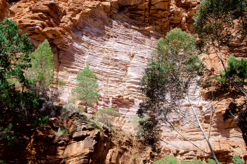 Walls of the gorge.