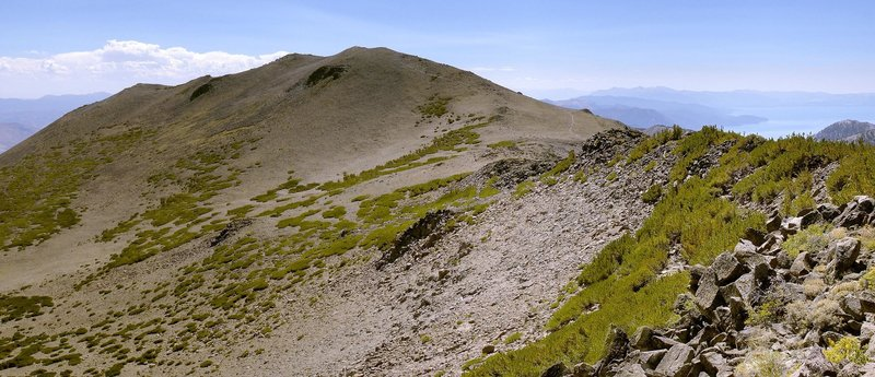 Mount Rose and its namesake summit trail seen from Church Peak.