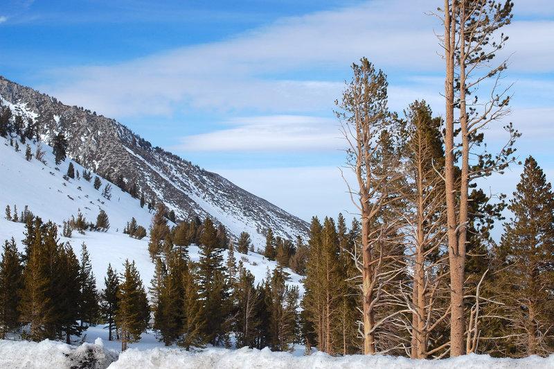 Wintertime is truly splendid spent along the Tahoe Rim Trail.