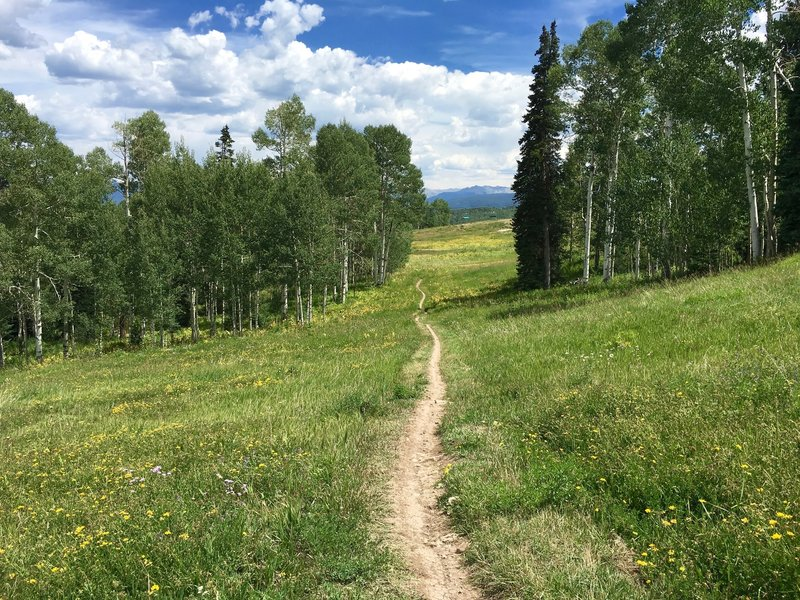 View looking toward Snowmass on descent.