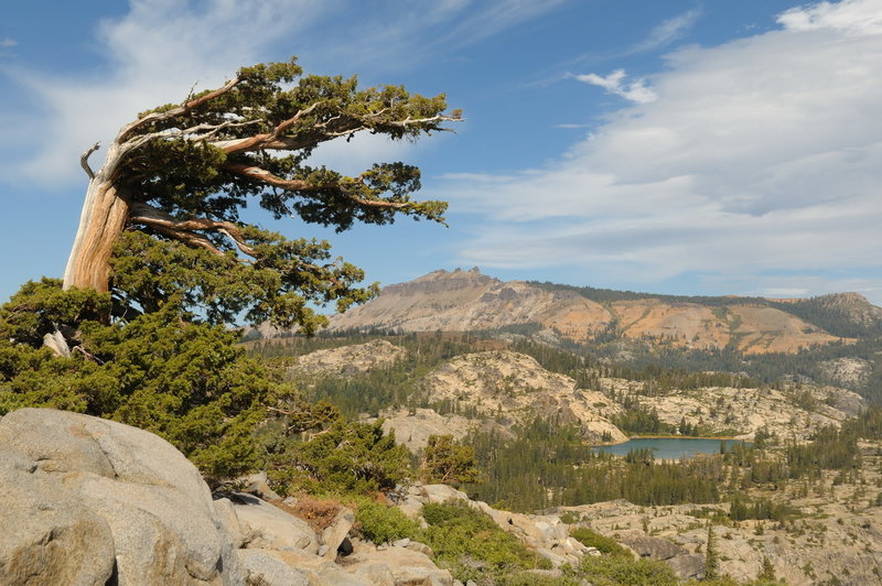 Castle Peak and Lake Angela from the flanks of Donner Peak. with permission from George Lamson