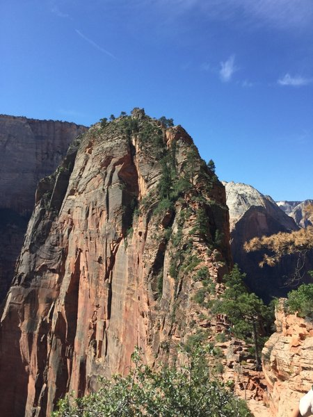 Angels Landing from Scout's Lookout.