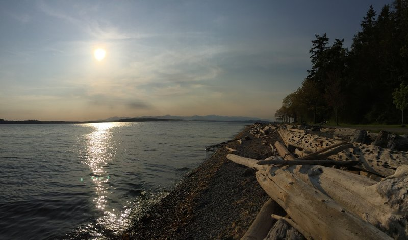 Grab a sunset stroll or run on this path in Lincoln Park for some incredible views of the Puget Sound and the Olympics Mtns.