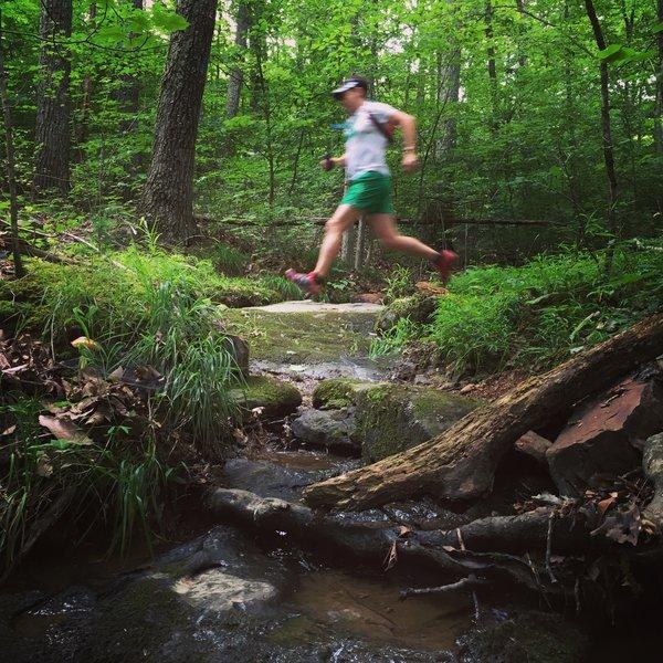 Crossing Brier Creek.