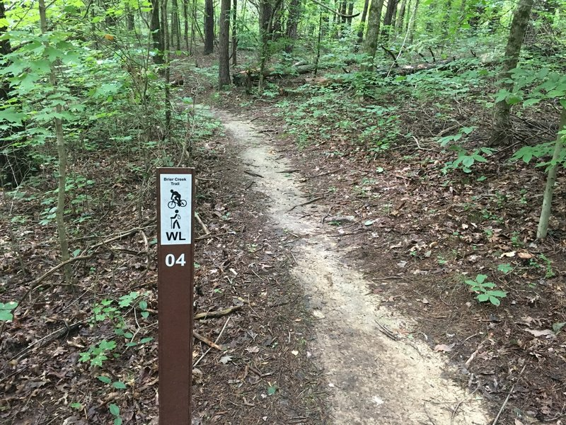 Typical signage on the trail system.
