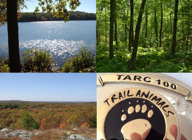 Scenes from the TARC 100 course, Hale Reservation, Westwood, MA.