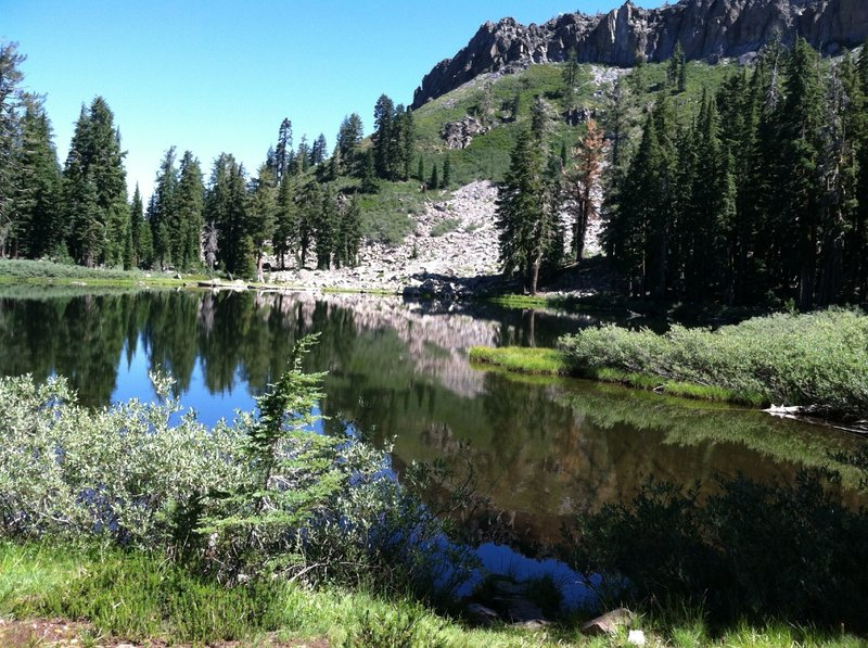 A view of the still waters of Ellis Lake.