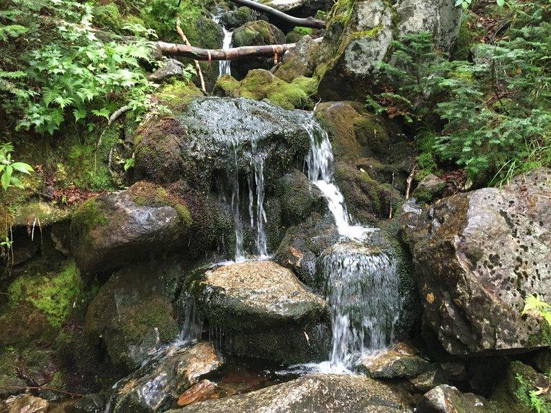 Second stream crossing.