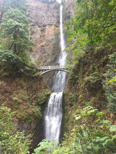 View up toward Multnomah Falls