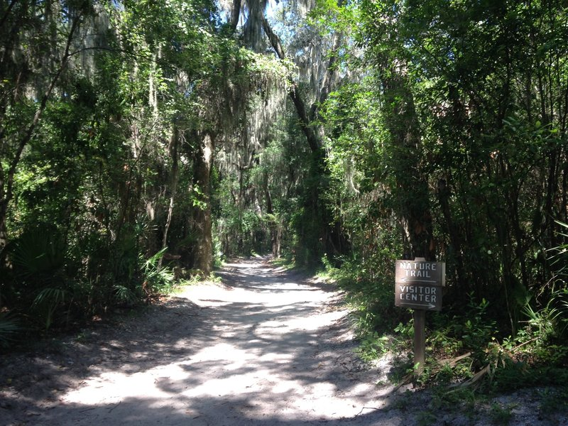 The Nature Trail begins along a sandy route.