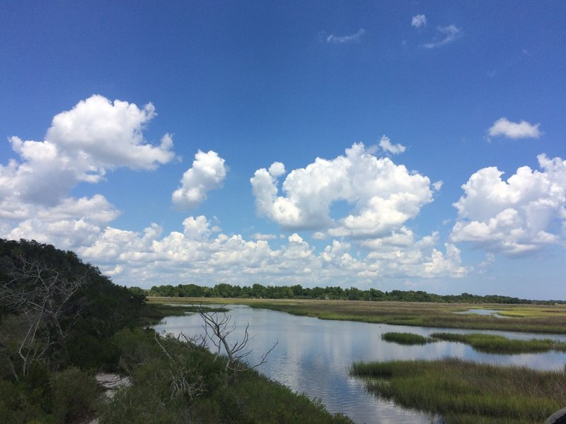 Another view of the marsh from the elevated platform.