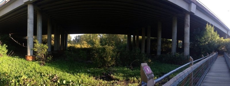 Second bridge, looking out under Hwy 16 and south side of wetlands.