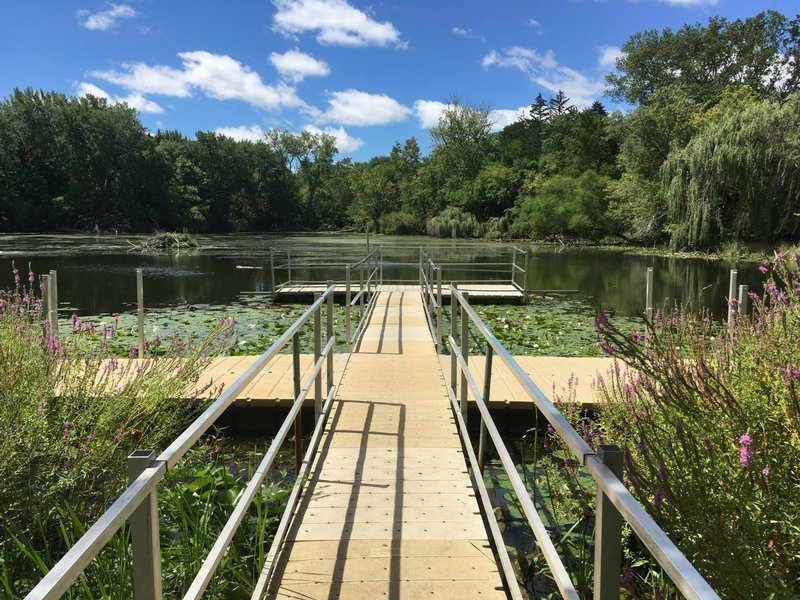 View facing west from floating pier on east side of lake. Spring Valley Nature Center 8/21/16