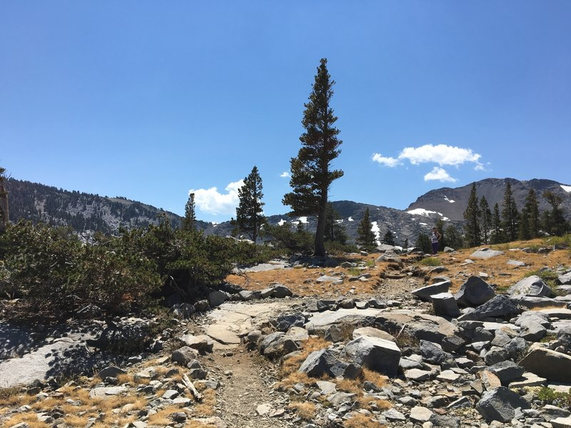 Looking up the Granite Lakes Trail.