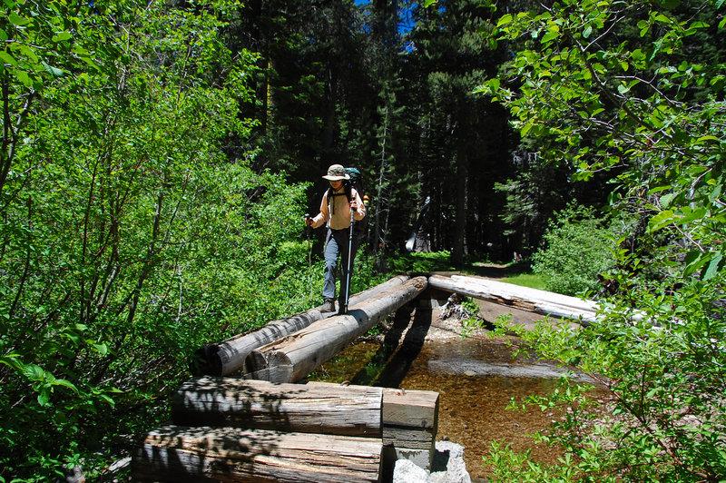 A log bridge helps keep hiker's feet dry as they cross Meeks Creek.