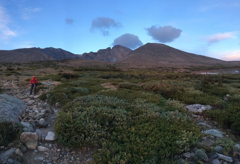 Chasm Lake Trail- view of Long's Peak in the distance at sunrise, just above tree line