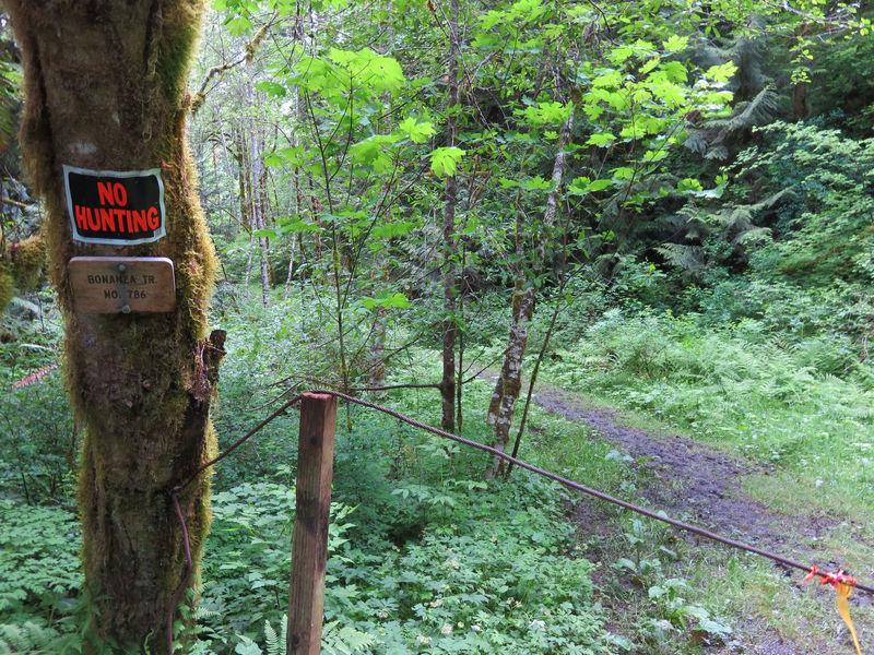 Bonanza Trailhead Area