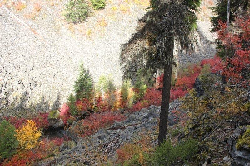 Mud Creek Canyon in fall.  Photo by Matt Reeder.