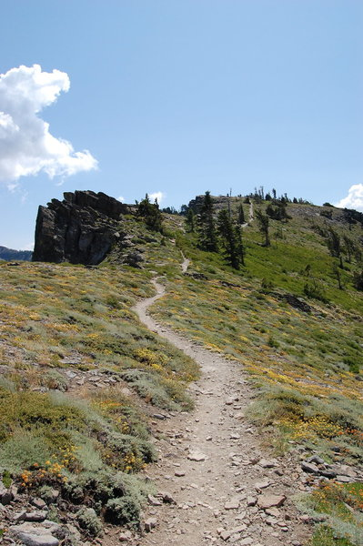 Ellis Peak Trail.