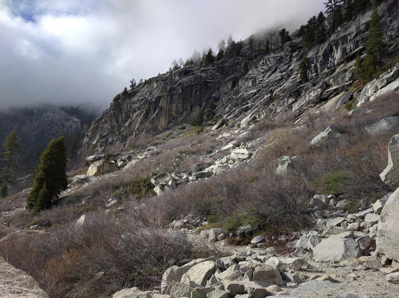 Views along the Tokopah Falls Trail.