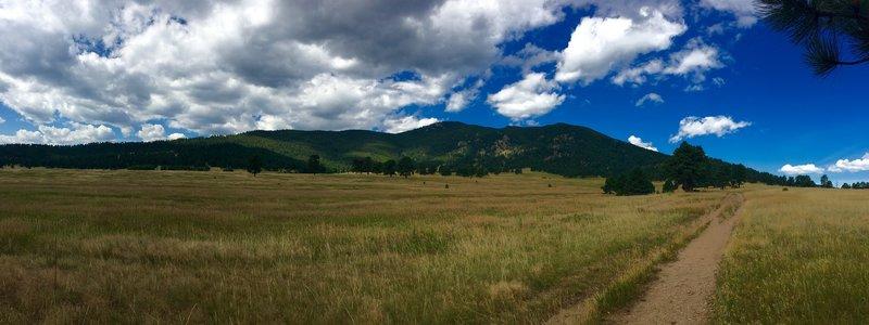 Looking back at Bergen Peak from Elk Meadow.