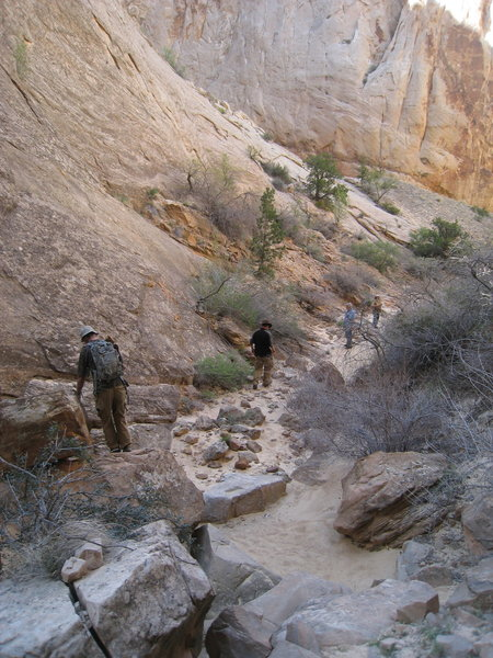 Navigating a section of rocks in Surprise Canyon.