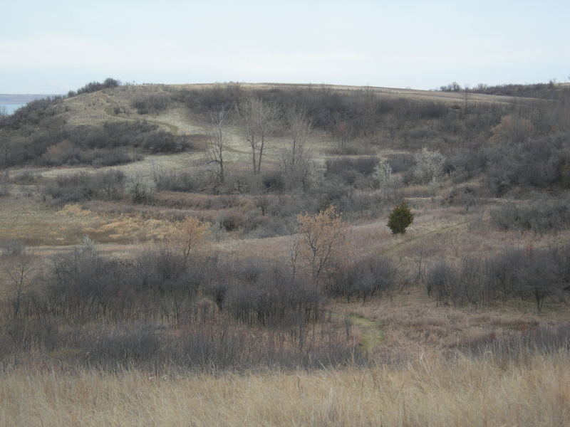 The park's diverse landscape includes prairie, shrublands, and forested ravines.