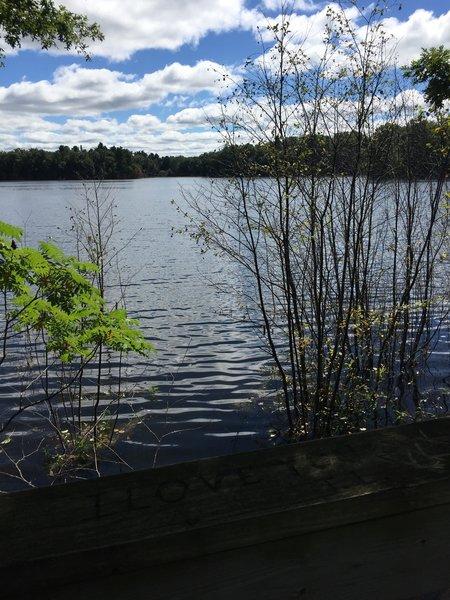 View on South Shattuck Lake.