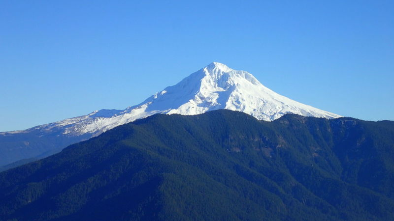 Mt. Hood from Boulder Ridge Trail on Huckleberry Mt. Photo by David Brown.